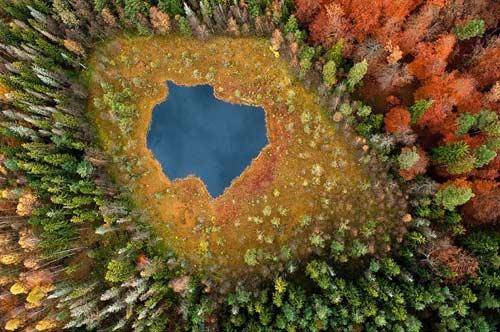 Ngắm rừng mùa thu Ba Lan từ trên cao - 1