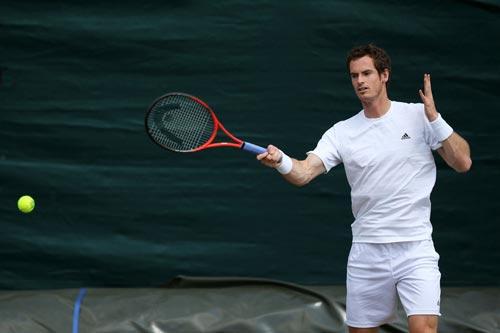 Murray khen ngợi Djokovic - 1