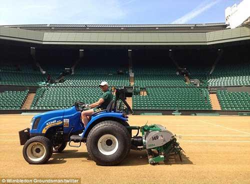 Wimbledon thay mặt cỏ sân trung tâm - 1