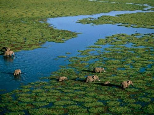 """Tới thăm Kenya - """"Cái nôi của nhân loại"""" - 1"""
