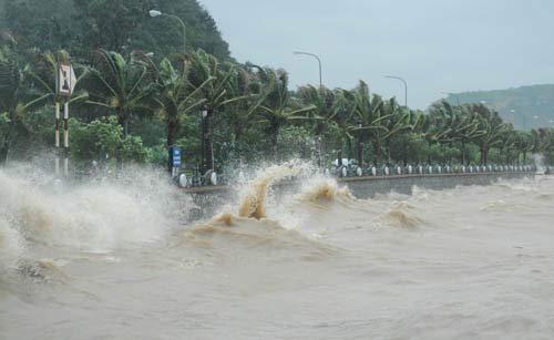 Dân vô tư đùa với bão bên kè biển - 1