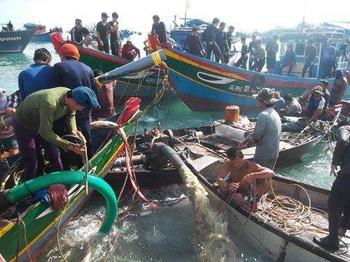 Kỳ bí vùng biển chôn vùi 4 tàu cổ vật - 1