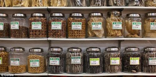 Thảo dược Trung Quốc chứa độc tố chết người - 1