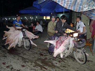 Thịt mất vệ sinh và tù mù chất cấm - 1