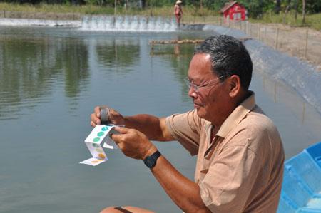 TQ tận thu tôm nguyên liệu, DN Việt lao đao - 1