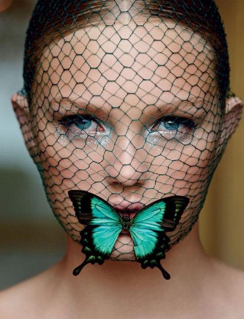 """Cánh bướm và chuyện """"chung ý tưởng"""" - 1"""