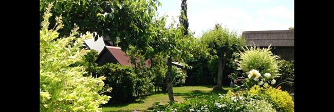 Không gian ngập tràn cây xanh của căn nhà.