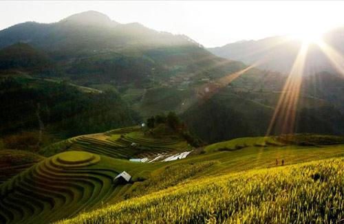 Mù Cang Chải: Danh thắng Quốc gia Ruộng bậc thang - 1