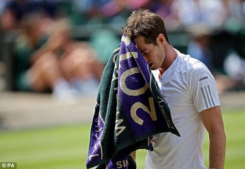 Murray - Dimitrov: Tốc chiến tốc thắng (TK Wimbledon) - 1