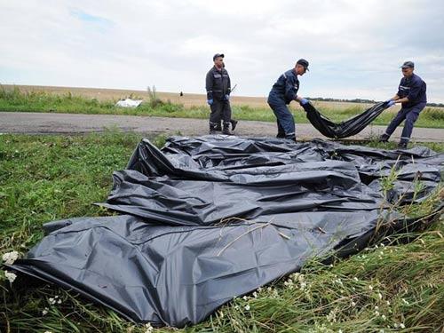 Vụ MH17: Mẹ nạn nhân cầu xin Nga trả lại thi thể con - 1