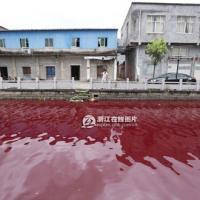 """TQ: Nước sông biến thành """"màu máu"""" chỉ sau 1 đêm"""