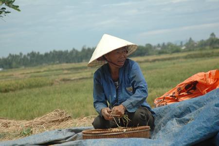 Lạ lùng xã có 500 cán bộ ở Thanh Hóa - 1