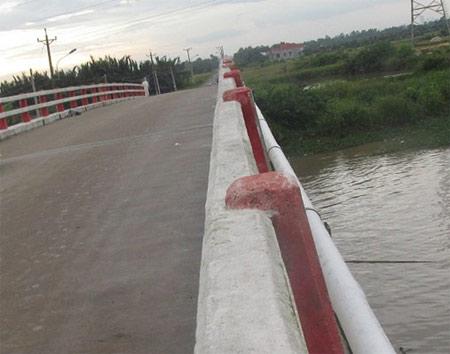 Phát hiện thi thể ca sỹ Duy Minh dưới chân cầu Đồng Nai - 1