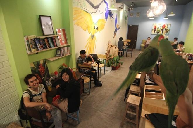 Cà phê cùng vẹt và cú hút giới trẻ Sài Gòn - 1