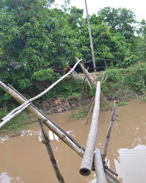 Khám phá những cây cầu khỉ cuối cùng ở miền Tây - 4