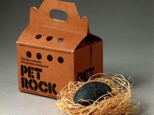 Kết quả hình ảnh cho PetRock