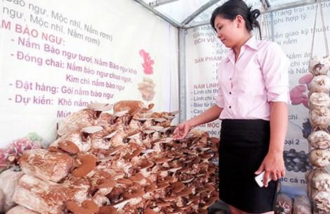 Nấm linh chi Việt thất thế trên sân nhà - 1