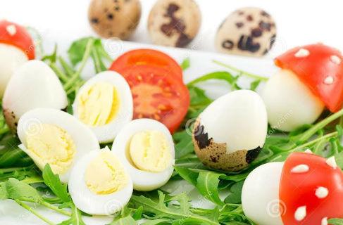 Trứng chim cút – thuốc quý chữa bách bệnh - 1