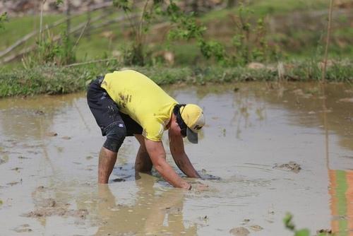 Nam Thành, Trang Pháp phải xuống ruộng bắt lươn - 1