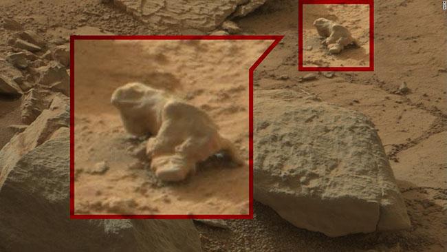 Đây là một bức ảnh chụp của Cơ quan hàng không vũ trụ Hoa Kỳ (NASA), nhìn từ xa có vẻ là một hòn đá bình thường nhưng lại mang hình dạng của một con kỳ nhông.