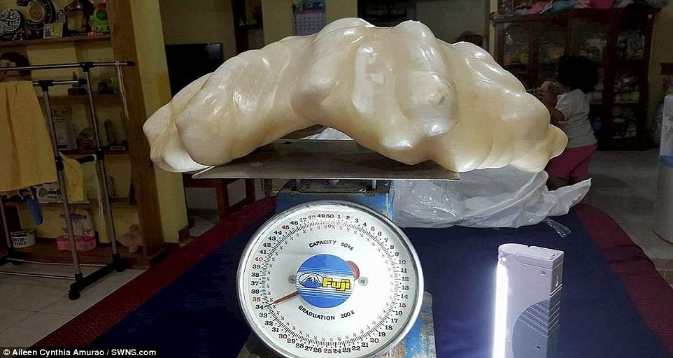 Ngư dân Philippines phát hiện ngọc trai khổng lồ 34 kg - 1