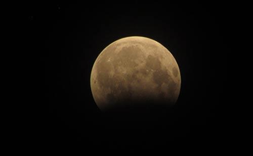 Phát hiện vật thể lạ trong ảnh gấu ăn trăng ở Hà Nội