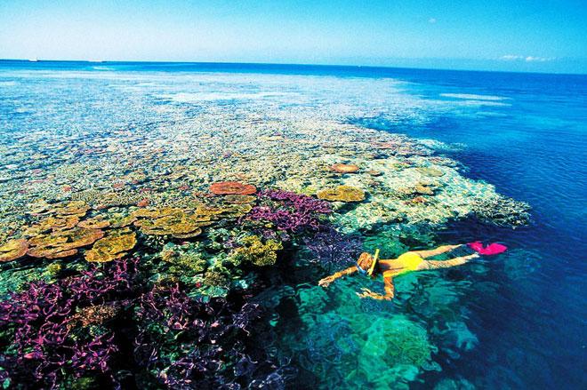 10 kỳ quan thiên nhiên đẹp tuyệt mỹ không thể bỏ qua khi đến Úc - 1
