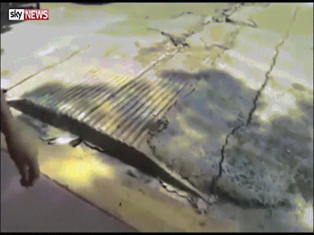 """Kinh dị mặt đường """"thở phập phồng"""" sau động đất Mexico"""