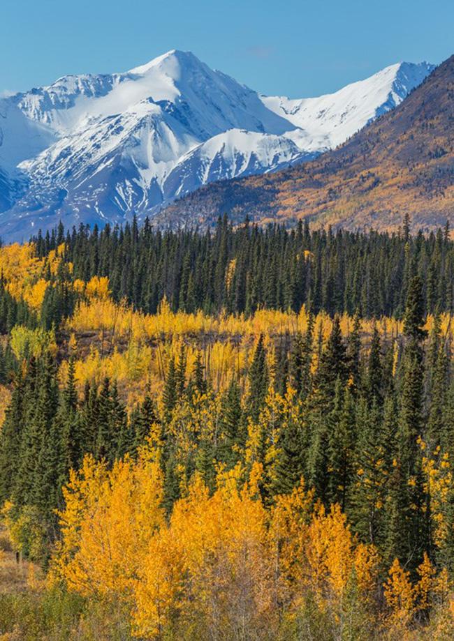 Pikatak Nunatak, Công viên quốc gia và bảo tồn Kluane, Yukon: Tuyến đường Pikatak Nunatak thường xuyên nằm trong danh sách các tuyến đi bộ tốt nhất của Canada và khi lên đến đỉnh của nunatak bạn có tầm nhìn tuyệt vời ra Núi Logan.