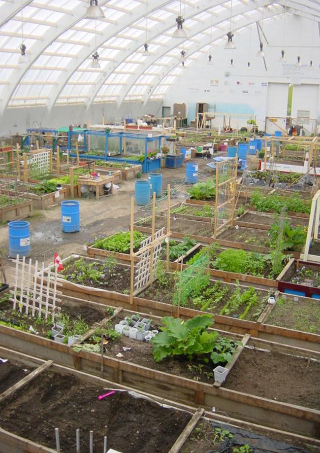 Inuvik Community Greenhouse, Inuvik, Lãnh thổ Tây Bắc: Vào mùa đông, nơi đây là một trong những nơi tốt nhất để xem bắc cực quang nhưng vào mùa hè, mặt trời chiếu vào lúc nửa đêm giúp người dân địa phương có thể trồng trái cây và rau quả.