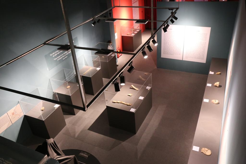 Bên trong triển lãm trưng bày xác người ở TP.HCM - 1
