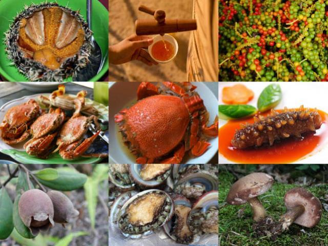 'Cửu độc đặc sản' nổi tiếng xa là nhớ, gần là mê ở đảo ngọc Phú Quốc