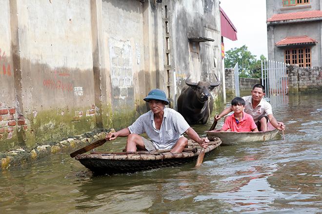 Người dân Chương Mỹ cười tươi, kéo xe, chèo thuyền đi nhận hàng cứu trợ - 1