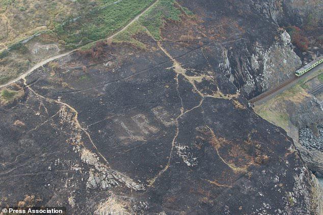 Cháy rừng để lộ thông điệp bất ngờ từ Thế chiến 2 ở Ireland - 1