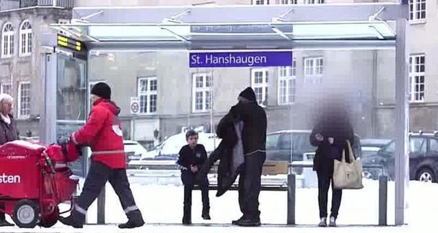 Lạnh giá, neo người nhưng vì sao các nước Bắc Âu vẫn giàu nứt đố đổ vách? - 1