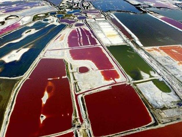 Hồ muối nghìn năm tuổi đẹp như cánh đồng hoa rực rỡ sắc màu