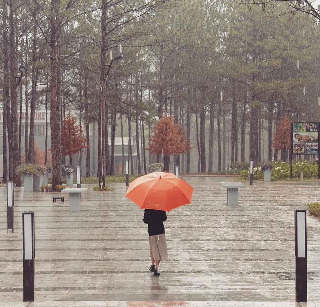 Đà Lạt mùa mưa say đắm một ngày, cả đời thương nhớ - 1