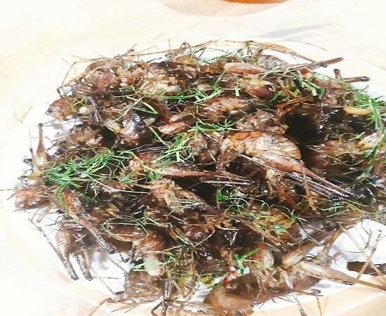 """Đặc sản côn trùng chôm chôm ở Tây Bắc """"nhìn thì ghê nhưng ăn là mê"""" - 1"""