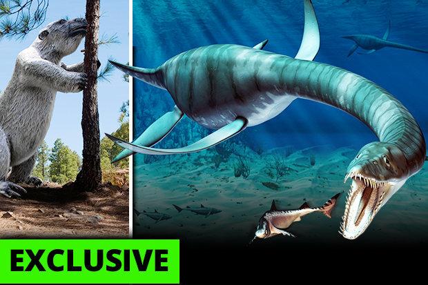 3 quái vật khổng lồ thời tiền sử có thể tồn tại đến ngày nay - 1