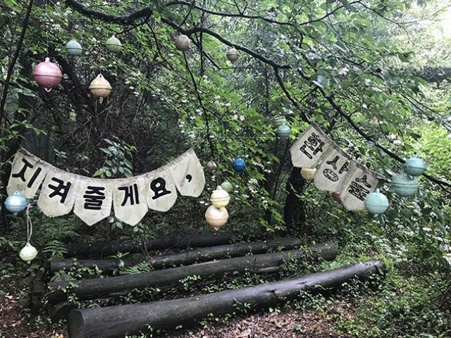 Những điểm check-in không thể bỏ qua tại hòn đảo nổi tiếng nhất Hàn Quốc