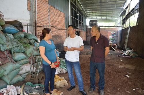 Kết luận điều tra vụ hồ tiêu trộn pin ở Đắk Nông - 1