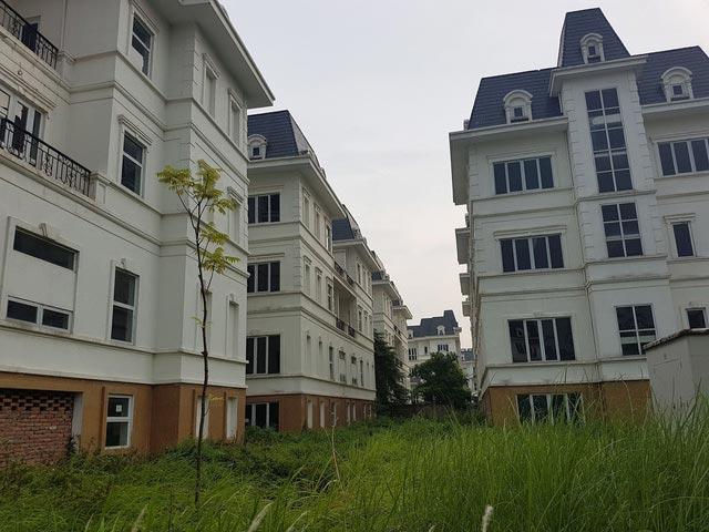 Kỳ lạ hơn 600 biệt thự phong cách châu Âu mọc đầy cỏ dại - 1