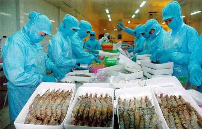 Sốc: Mỹ bất ngờ giảm 5 lần mức thuế bán giá với tôm Việt Nam - 1