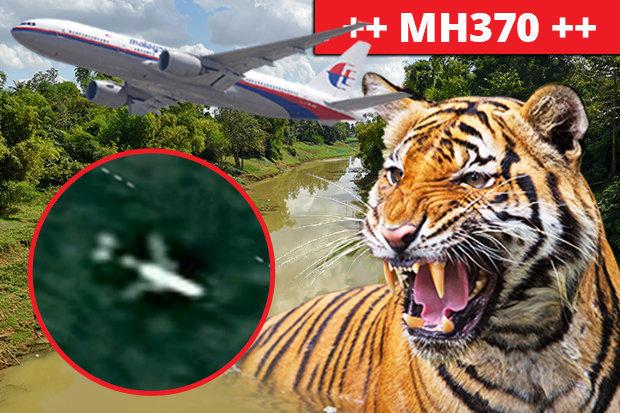Nguy hiểm sống còn đe dọa đội tìm kiếm MH370 trong rừng rậm Campuchia - 1