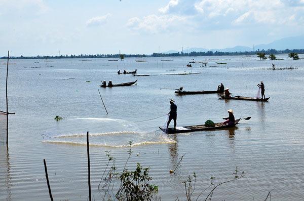 An Giang: Mùa nước nổi nhộn nhịp bắt cá tôm, hái bông điên điển - 1