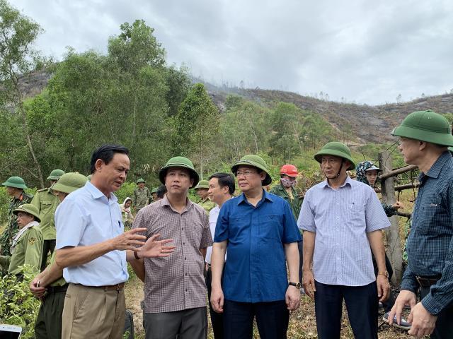 Phó Thủ tướng nói lý do chưa điều động trực thăng chữa cháy rừng ở Hà Tĩnh