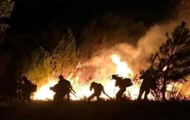 Rơi nước mắt những dòng sẻ chia người lính chữa cháy rừng ở Hà Tĩnh - 1