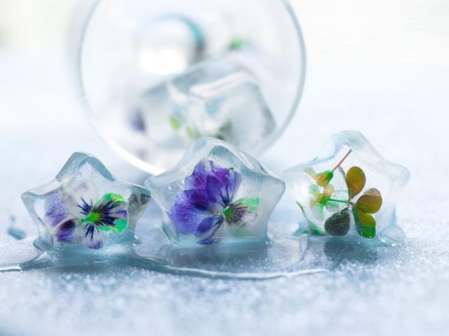 Những món ăn làm từ hoa tươi vừa đẹp vừa ngon khó cưỡng