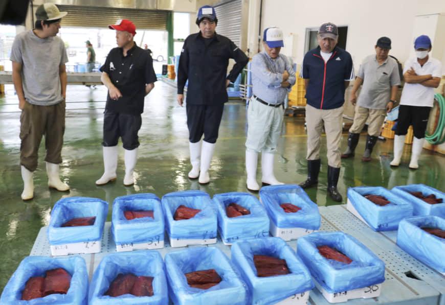 Đấu giá thịt cá voi tàu Nhật Bản lần đầu tiên đi săn được sau 31 năm - 1