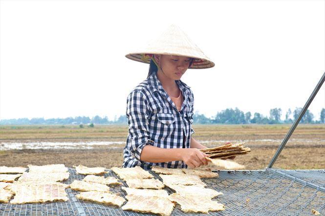 Độc đáo khô cá sấu ở An Giang - 1